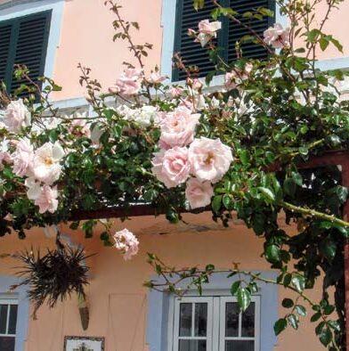 liefdevol gerestaureerd huis op Madeira