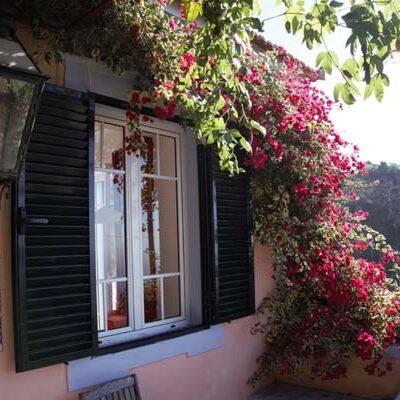 Het zijterras van het vakantiehuis op Madeira