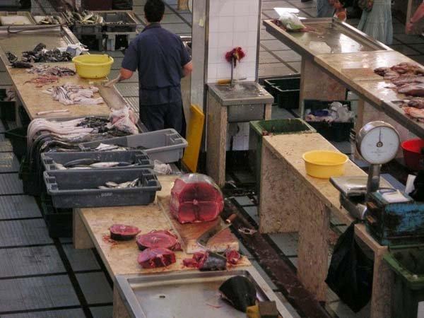 plenty of fresh fish